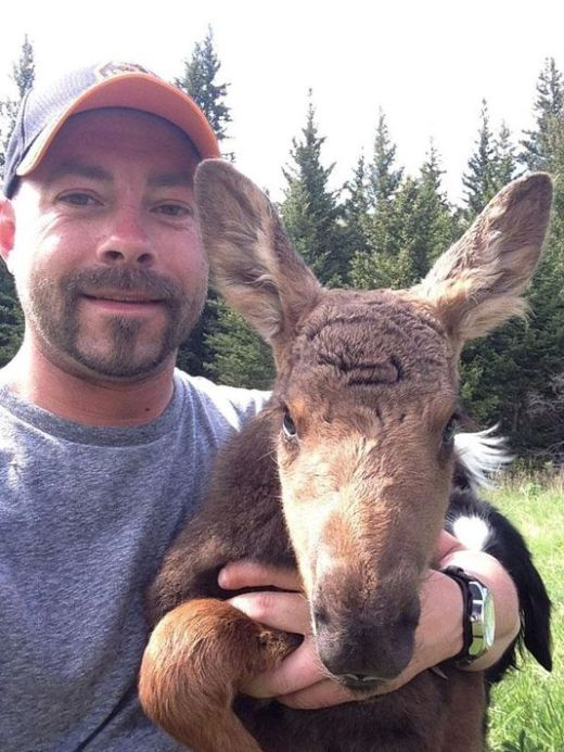 Camper Josh Hohm and his baby moose pal.